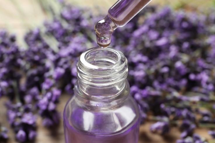 4 keunggulan Minyak Lavender, Benarkah Jadi Cara Mencegah Gigitan Nyamuk?